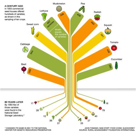 seed-saving-graphic