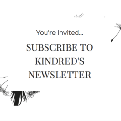 Kindred Newsletter Box 2020