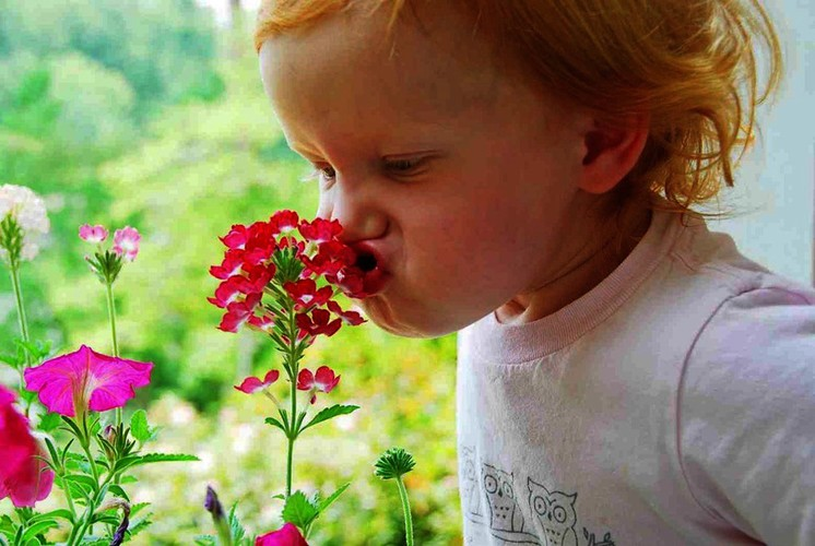 girl_smelling_flower-page2486